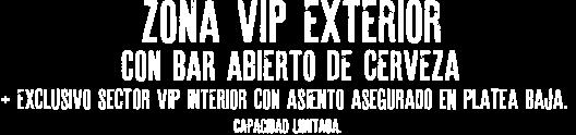 Zona VIP con bar abierto