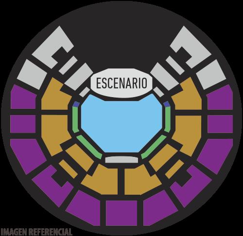 Teatro Caupolicán   Imagen referencial