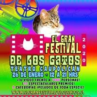El Gran Festival De Los Gatos Teatro Caupolicán - Santiago