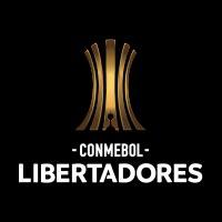 Final Única de la CONMEBOL Libertadores Santiago 2019 Estadio Nacional - Santiago