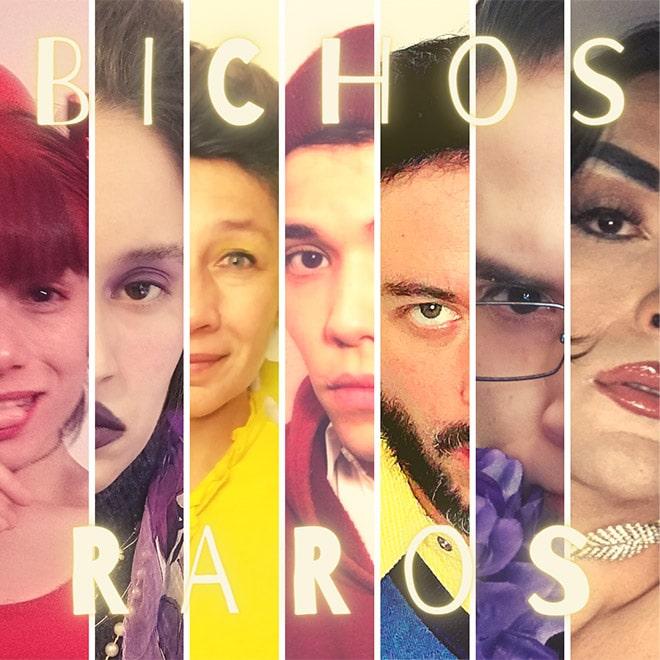 Bichos Raros Streaming Punto Play - Santiago