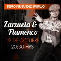 Zarzuela y Flamenco Teatro Oriente - Providencia