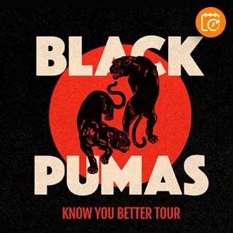 Black Pumas Sala Metrónomo - Santiago