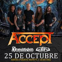 Accept Arena Puerto Montt - Puerto Montt