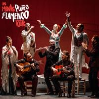 Las Minas Puerto Flamenco Tour Museo Arte Contemporáneo Parque Forestal - Santiago