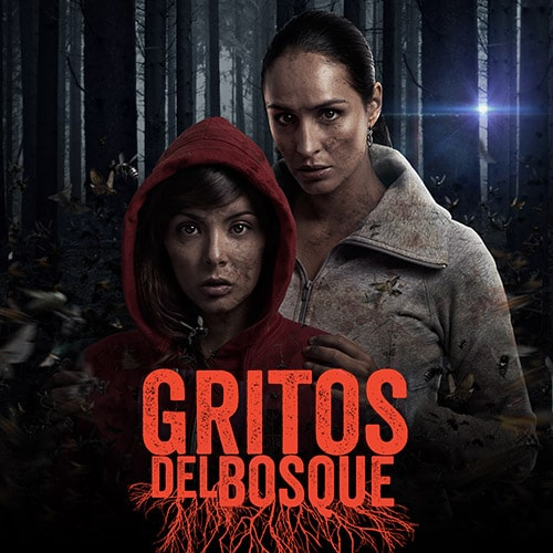 Gritos del bosque Streaming Punto Play - Santiago