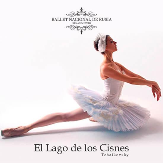 El Lago de los Cisnes Streaming Punto Play - Santiago