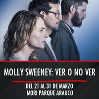 Molly Sweeney: ver o no ver Teatro Mori Parque Arauco - Las Condes