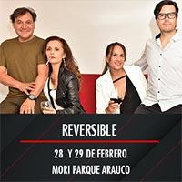 Reversible Mori Parque Arauco - Las Condes