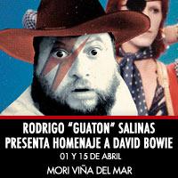 """Rodrigo """"Guaton"""" Salinas presenta Homenaje a David Bowie Enjoy Viña del Mar - Viña del Mar"""