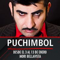 Puchimbol Mori Bellavista - Constitución 183 - Providencia