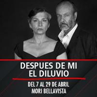 Despues de mi el diluvio Mori Bellavista - Constitución 183 - Providencia