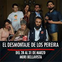 El desmontaje de los Pereira Mori Bellavista - Constitución 183 - Providencia
