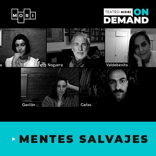 Mentes salvajes Streaming Punto Play - Santiago