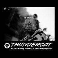 Thundercat Cúpula Multiespacio - Santiago